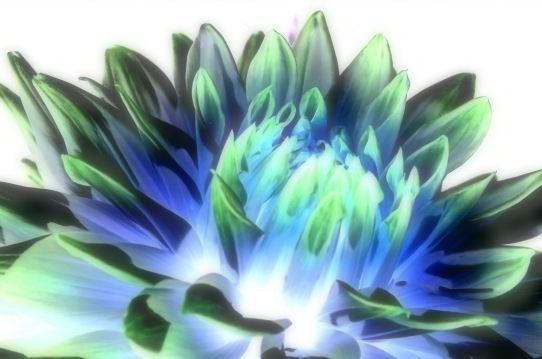 アルペンビル・ダリア0137~2.jpg