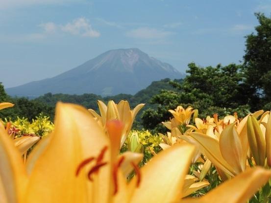 ユリと大山1100125.jpg
