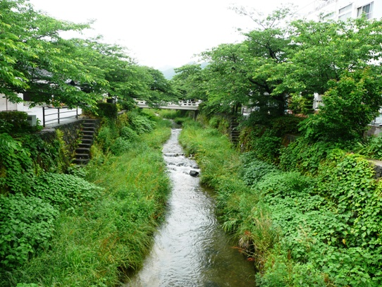 一の坂川1060266.jpg