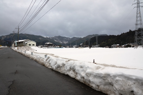 上斎原の雪5559.jpg