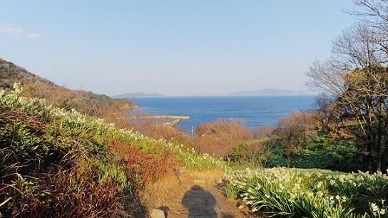 六島0891.jpg