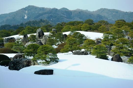冬の庭園5735.jpg