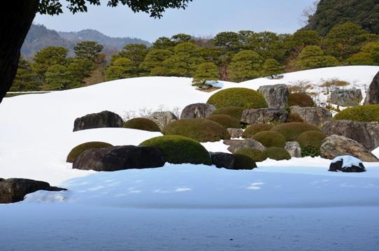 冬の庭園5739.jpg