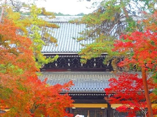 南禅寺1360121.jpg