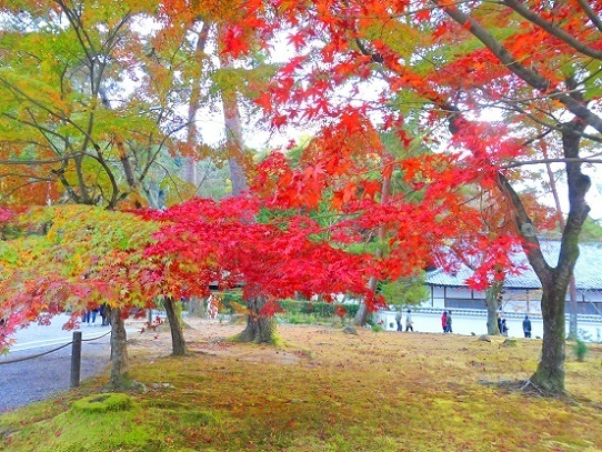 南禅寺1360124.jpg