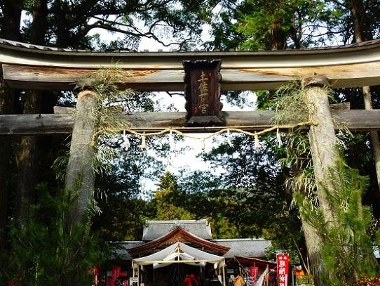 土佐神社1390046.jpg