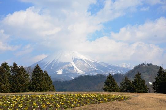 大山9815.jpg