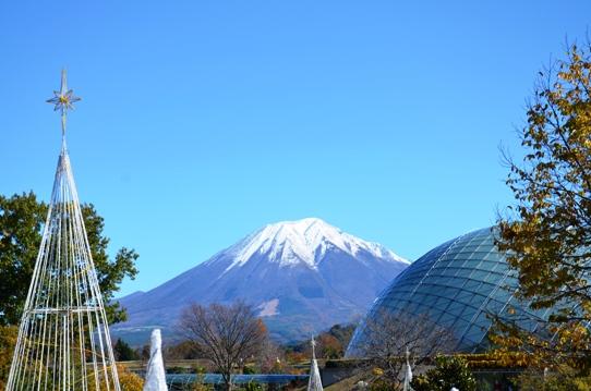 大山・とっとり花回廊4912.jpg