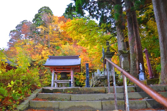 大山寺の紅葉2259.jpg