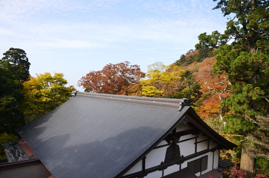 大山寺の紅葉7826.jpg