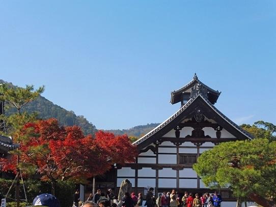 天龍寺1360097.jpg