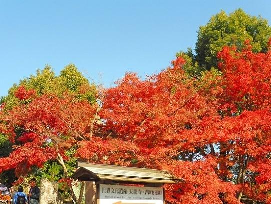 天龍寺1360102.jpg