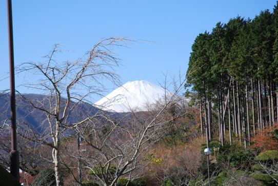 富士山0162花月園.jpg