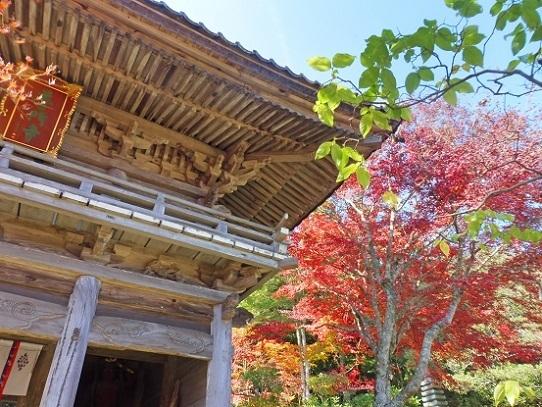 普門寺1360012.jpg