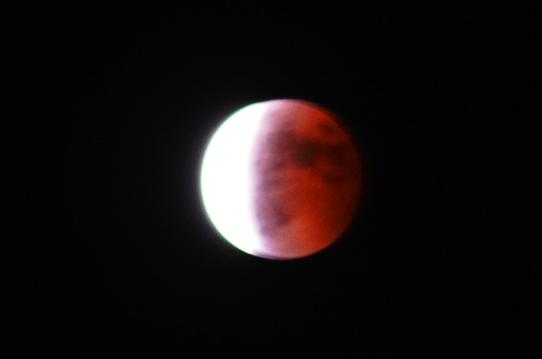 月食3556.jpg