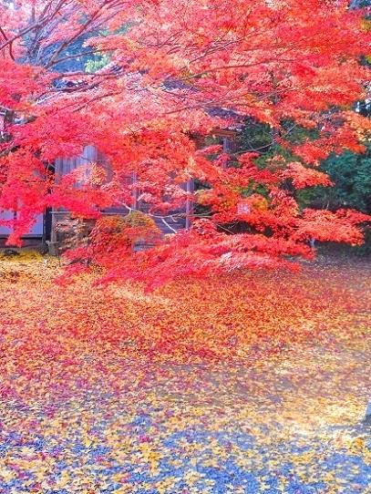 木山寺1360058.jpg