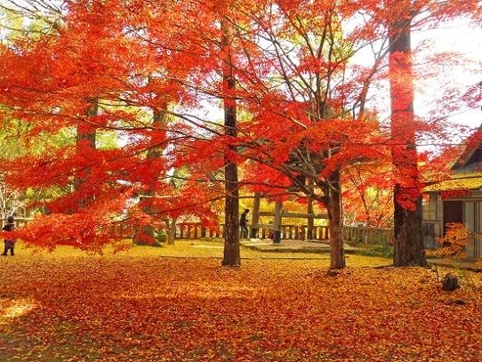 木山寺1360067.jpg