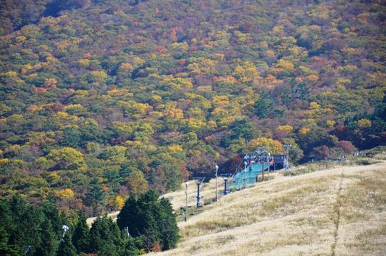 桝水高原から見た大山7771.jpg