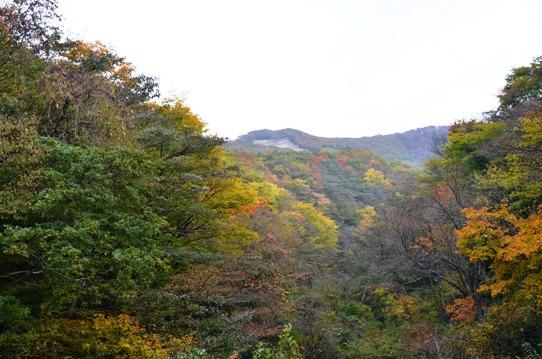 紅葉の大山7835.jpg