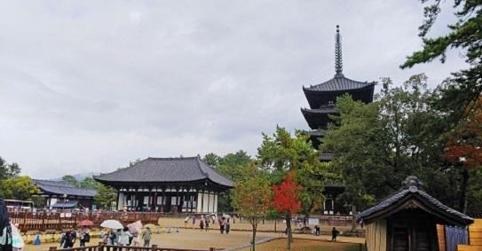 興福寺東金堂と五重塔0755.jpg