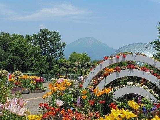 花と大山とフラワードーム1100002.jpg