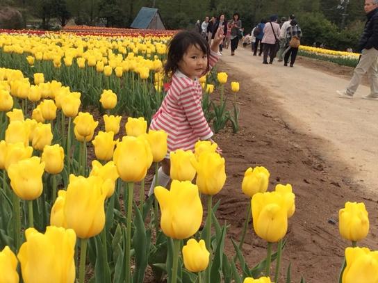 花と戯れて0294.jpg