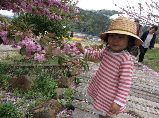 花と戯れて0366.jpg