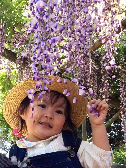 花と戯れて0477.jpg