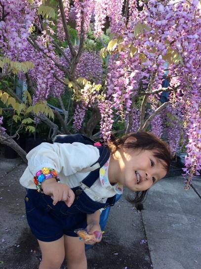 花と戯れて0514.jpg