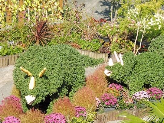 花回廊の秋の花1300414.jpg