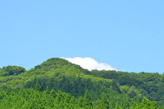 蒜山の空と緑3187.jpg