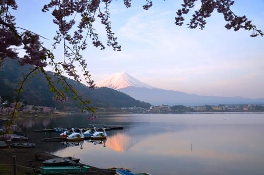 逆さ富士1257.jpg