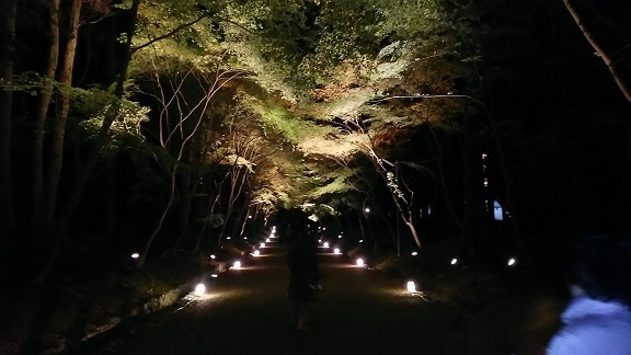 醍醐寺0333.jpg