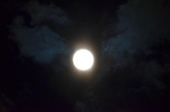 雲間の月3574.jpg