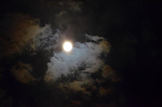 雲間の月3584.jpg
