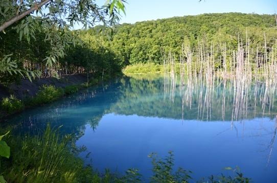 青い池4774.jpg