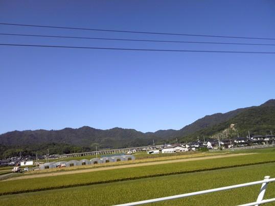 青空SH3B0122.jpg