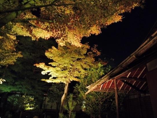 高台寺1310093.jpg