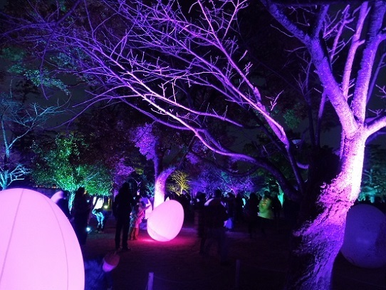 高知城光の祭り1390024.jpg