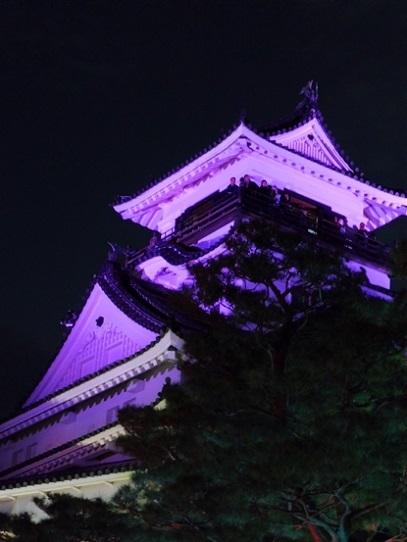 高知城光の祭り1390028.jpg