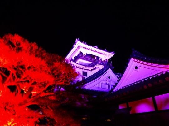 高知城光の祭り1390036.jpg